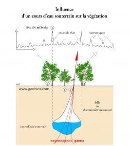 géobiologie - Rayonnement électromagnétique et influence sur la nature d'une veine d'eau geobiologue energie reiki soins bien etre tarbes 65 pau 64 gers 32